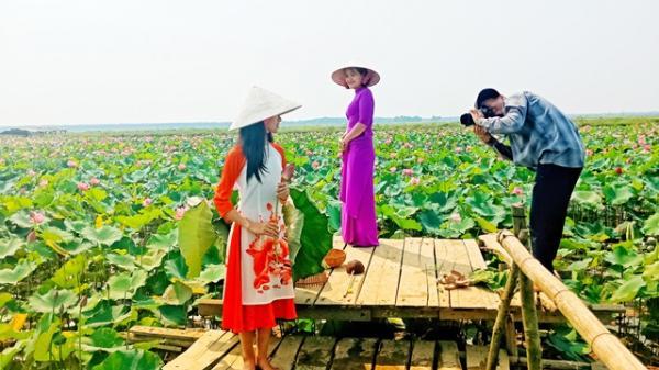 Quả ngọt từ lối đi riêng của người đàn ông Quảng Bình