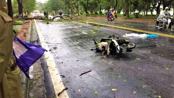 Thanh niên ở Huế tử vong do cây đè trong mưa bão, bị lấy mất 30 triệu đồng trong cốp xe