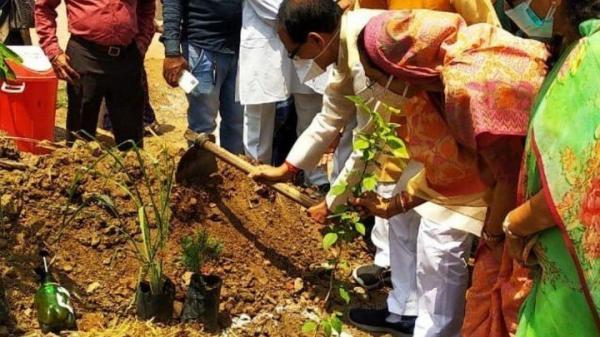Ấn Độ xây công viên từ tro cốt nạn nhân Covid-19
